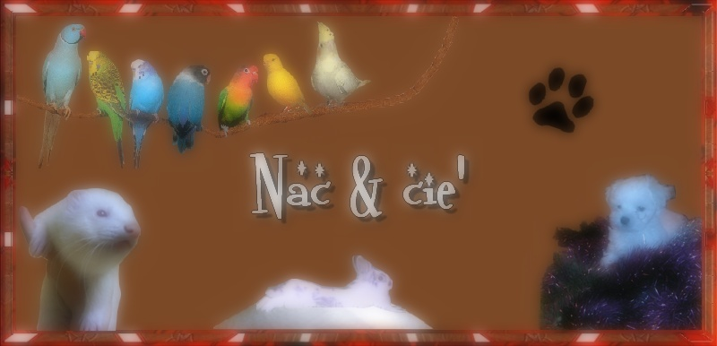 Nac & Cie =)