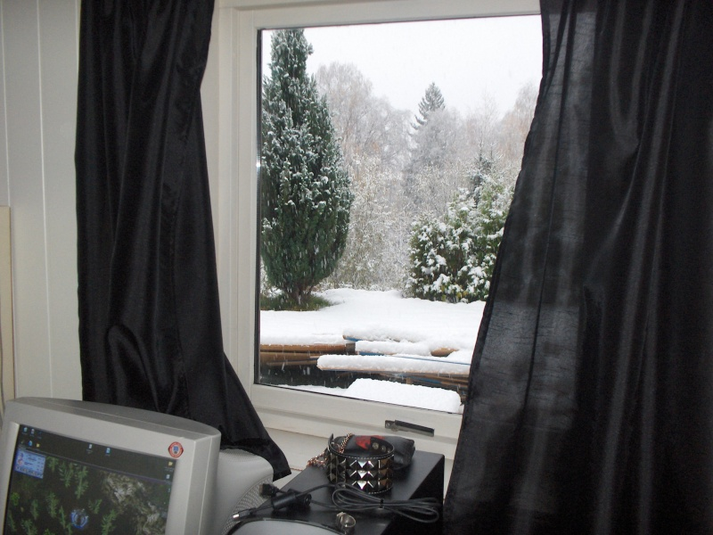 SNOW! Winter11