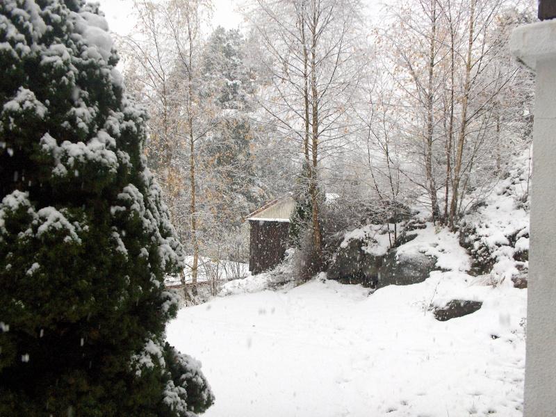 SNOW! Winter14
