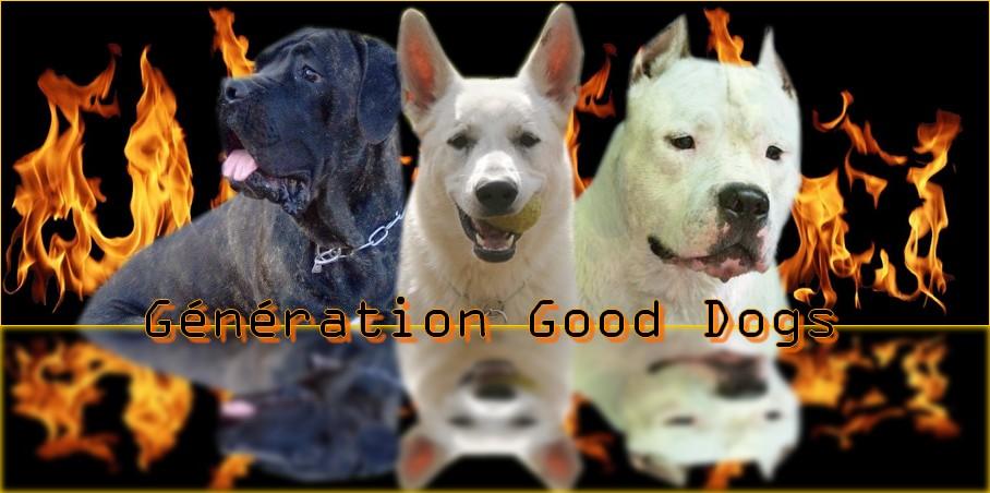 Generation Good Dogs