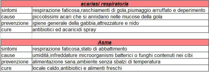acariasi respiratoria ed asma negli agapornis Acaria10