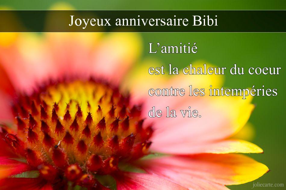 Anniversaires membres - Page 5 Bibi10