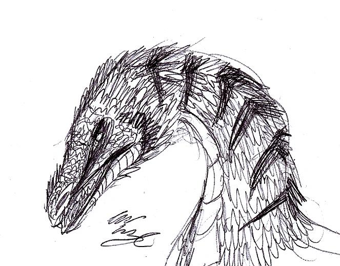 DTG's Dinosaurs Scan0012