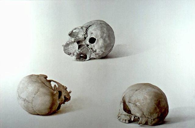 Cráneos. Claudio Bravo Cb_4810
