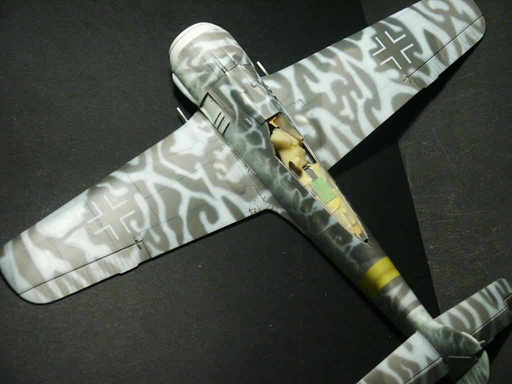 Fw 190 F8 revell (32) Pict5234