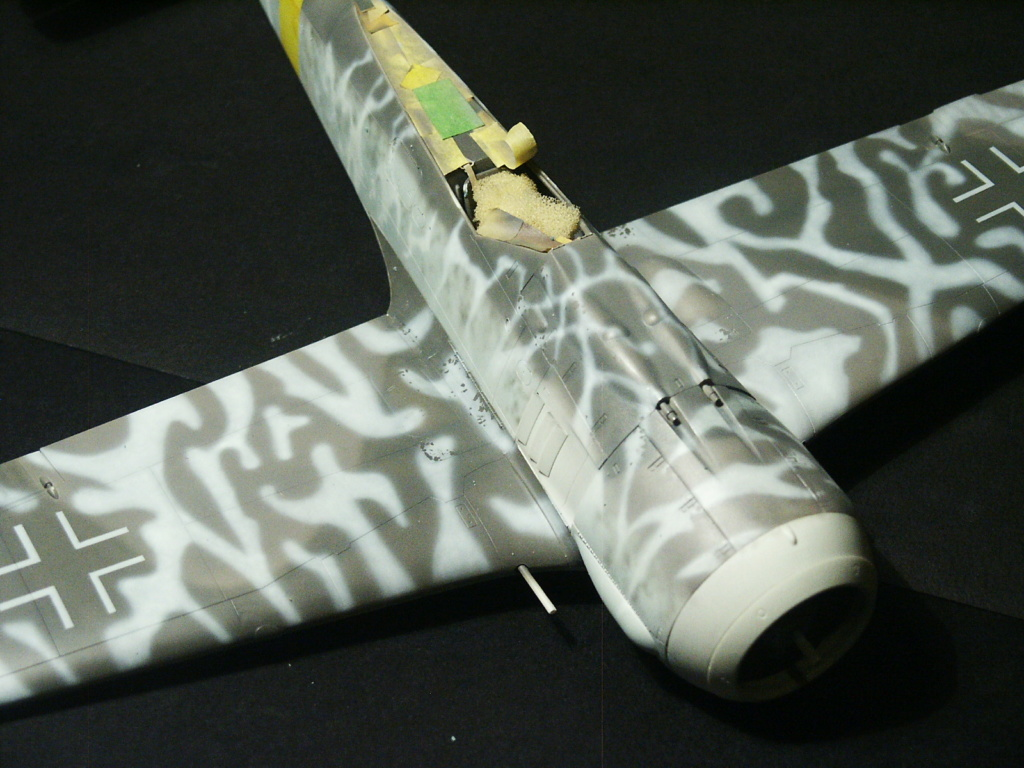 Fw 190 F8 revell (32) Pict5312
