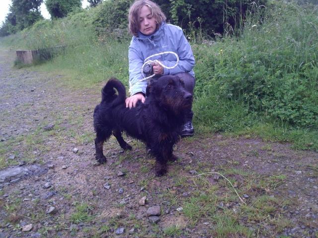 Marius : oui oui cette chose est bien un chien Marius11