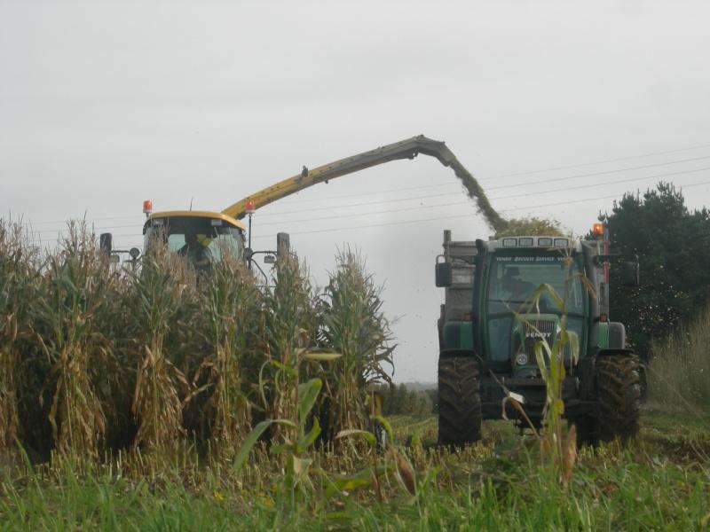 Ensilage de maïs 2008 - Page 6 Dscn6210