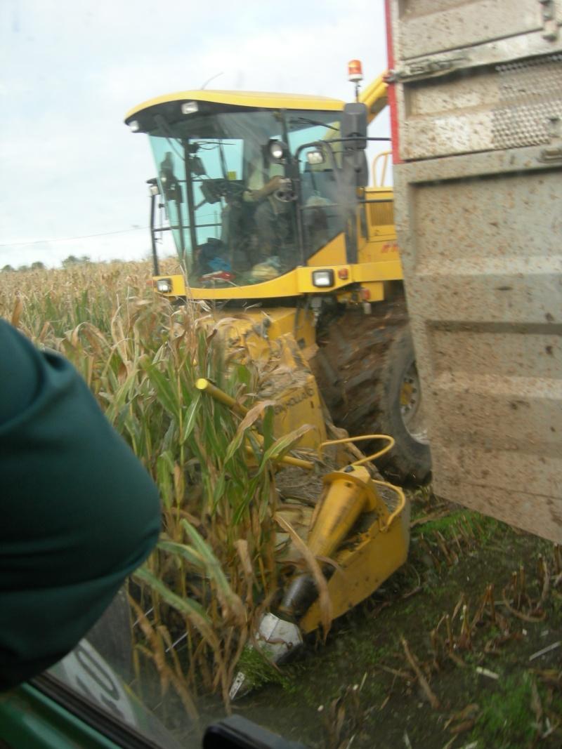 Ensilage de maïs 2008 - Page 6 Dscn6216