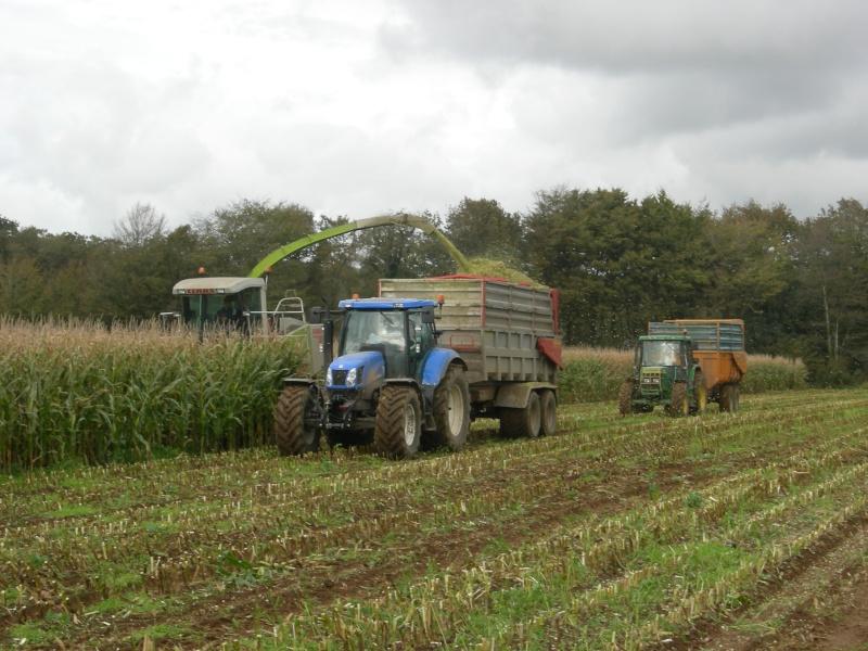 Ensilage de maïs 2008 - Page 6 Dscn6220