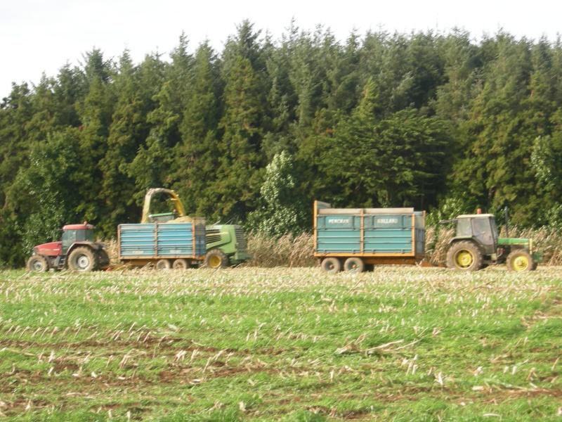 Ensilage de maïs 2008 - Page 6 Dscn6312