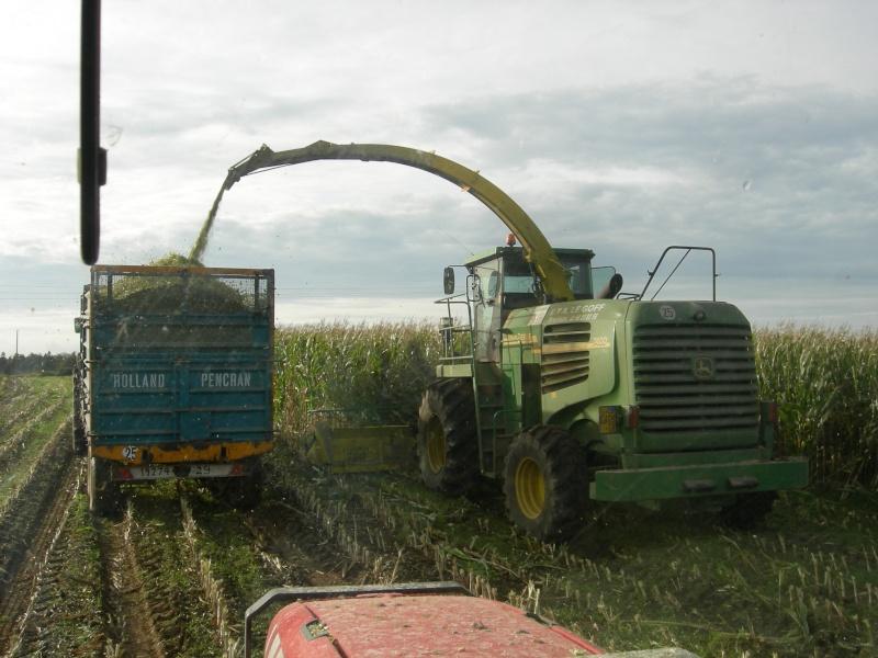 Ensilage de maïs 2008 - Page 6 Dscn6316