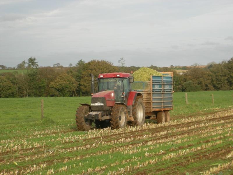 Ensilage de maïs 2008 - Page 6 Dscn6317