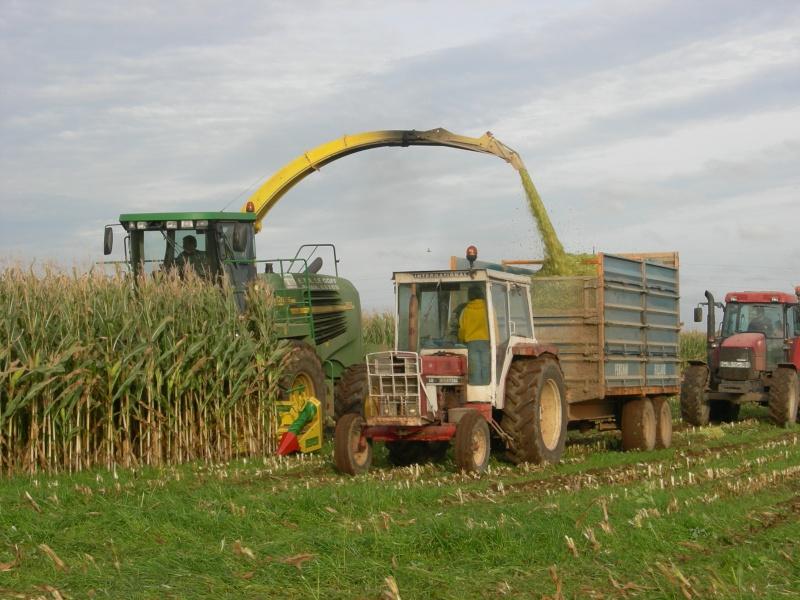 Ensilage de maïs 2008 - Page 6 Dscn6318