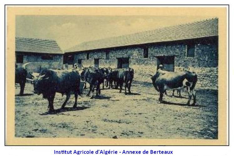 Une carte postale de Berteaux Instit10