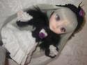 PULLIP Suigintou — январь 2007 Dscn3712