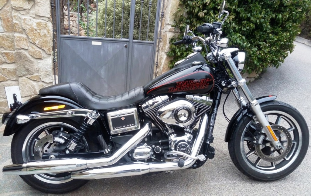 DYNA LOW RIDER ,combien sommes nous ? - Page 13 Img_2033