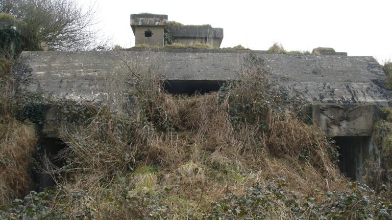 Monument WW2 - Sortosville-en-Beaumont ( Manche - Normandie )   P1090527