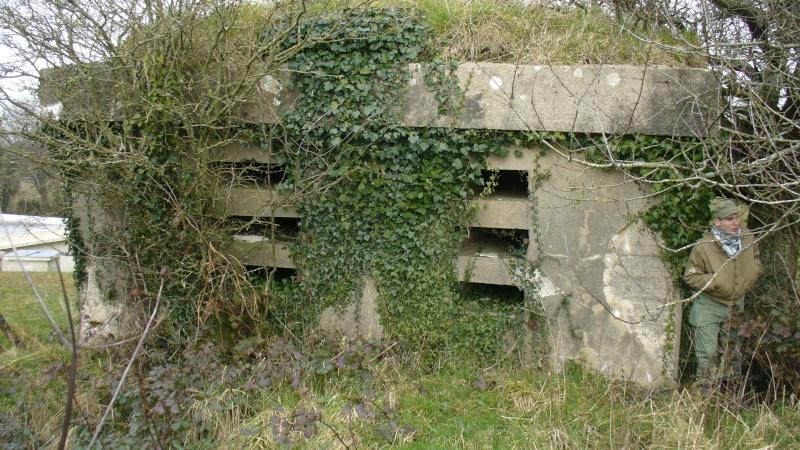 Monument WW2 - Sortosville-en-Beaumont ( Manche - Normandie )   P1090531