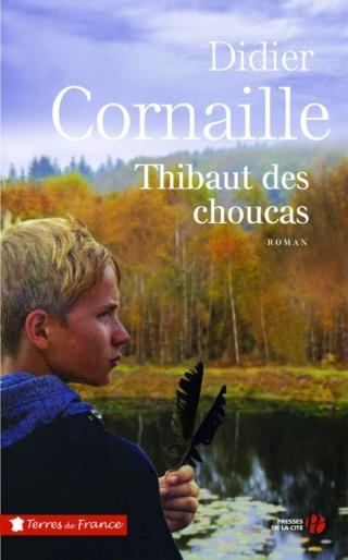 Fiches de lecture - instructions. Thibau10