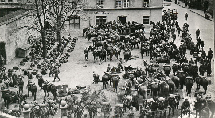 Chasseurs alpins, brouette Chasse10