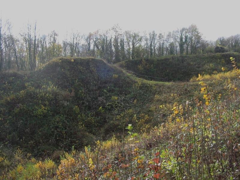 Petite virée prés de Verdun 09911