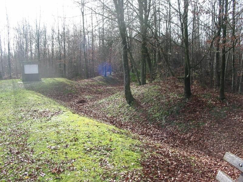Petite virée prés de Verdun 11811