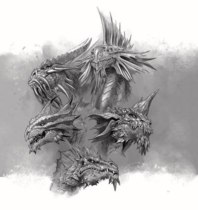 les dragons 7567710