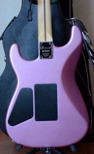 Photos de vos guitares. - Page 37 Burgun12