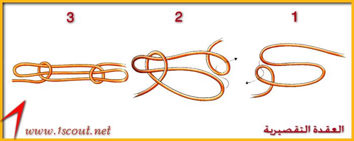 العقدة التقصيرية 2 Ououoo16