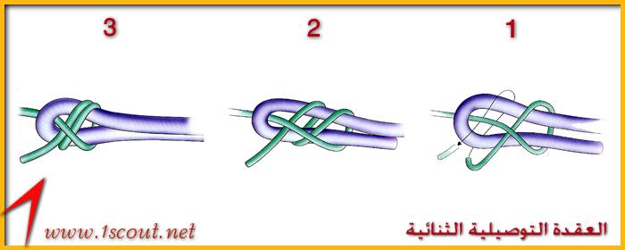 العقدة التوصيلية الثنائية Ououoo18