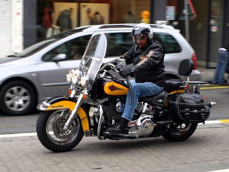 Combien de Softail sur le forum Passion-Harley - Page 2 Ninove16