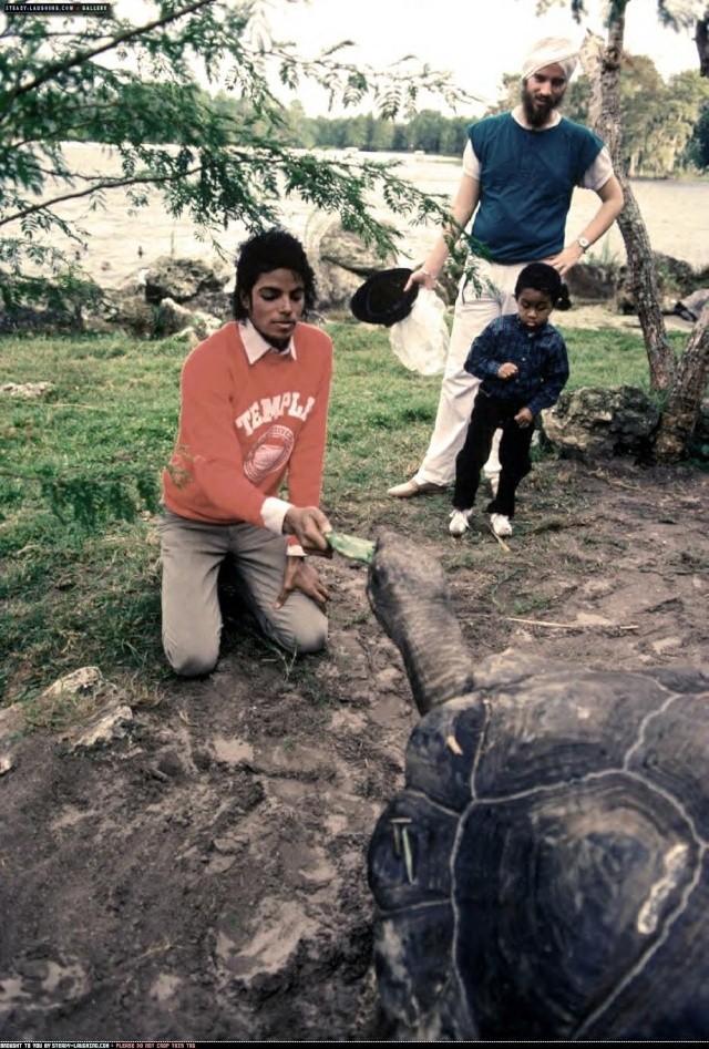 Collection MJ-Story : Michael et les animaux ^^ 1984_m10