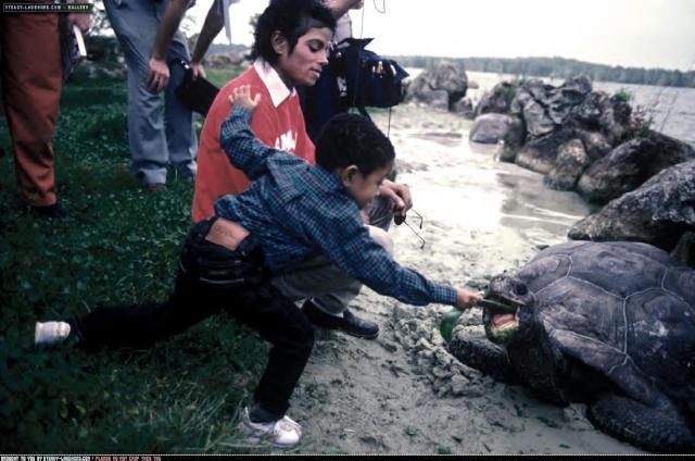 Collection MJ-Story : Michael et les animaux ^^ Michae16