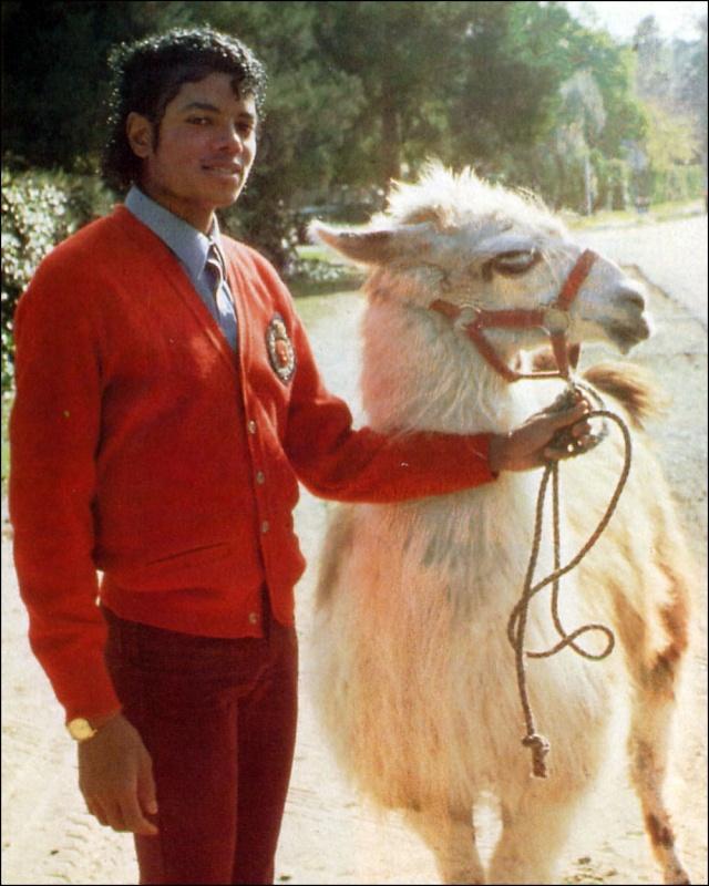Collection MJ-Story : Michael et les animaux ^^ Michae23