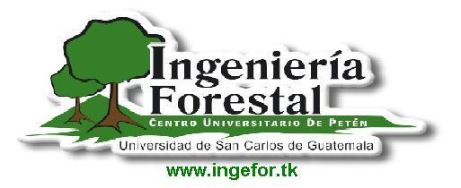 www.ingefor.tk Logo_i10