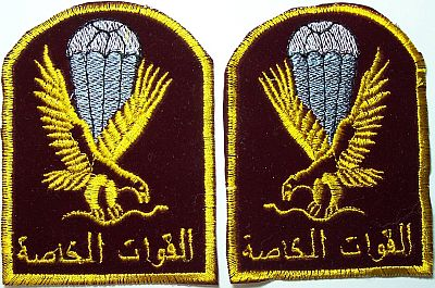 Patches worn by New Iraq Army. 100_0510