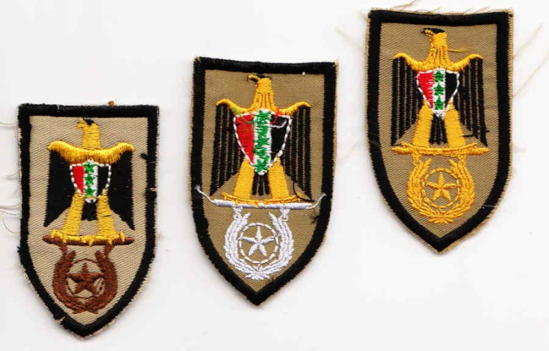 Patches worn by New Iraq Army. Combat10