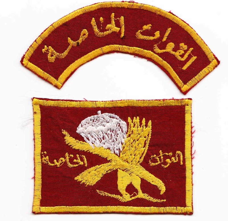 Patches worn by New Iraq Army. Iraqis12