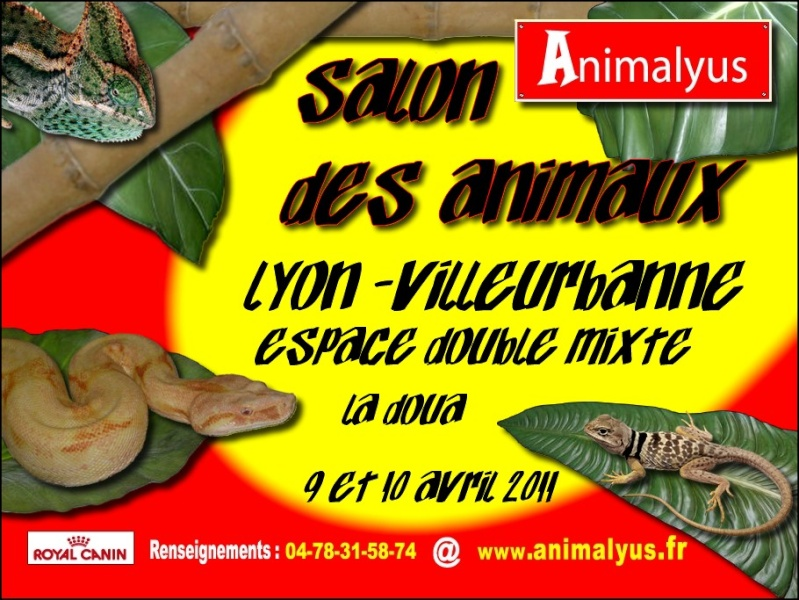 Salon ANIMALYUS, Lyon Villeurbanne, 9/10 AVRIL 2011 Affich12