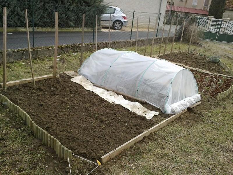 La première vraie récolte de notre premier jardin ! - Page 2 Jardin11
