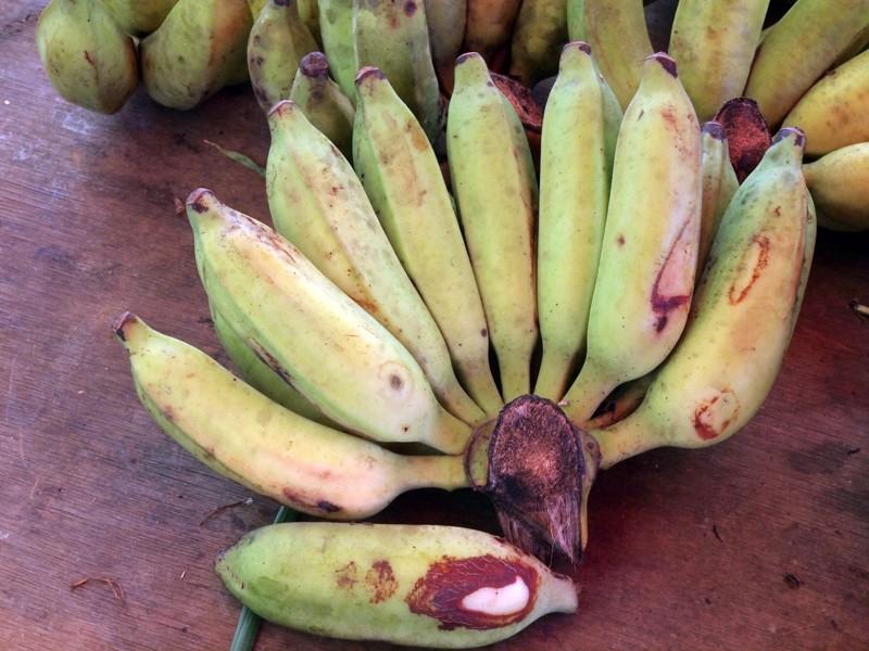 Fruits et Légumes sur les marchés de l'ile de la Reunion Banane10