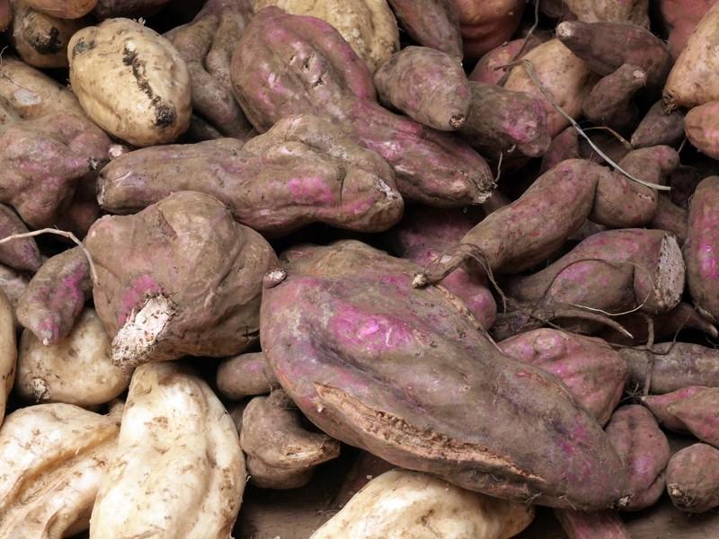 Fruits et Légumes sur les marchés de l'ile de la Reunion Paptat10