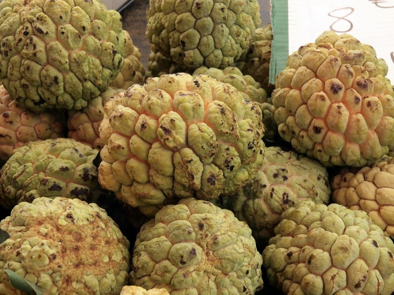 Fruits et Légumes sur les marchés de l'ile de la Reunion Zatte10