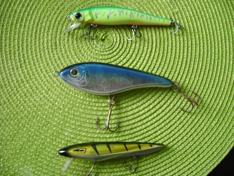 Vends canne smith dragonbait cranckbait + poissons nageurs Dsc06512