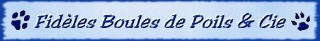 Demande pour Fidèles Boules de Poils et Cie Mini-b11