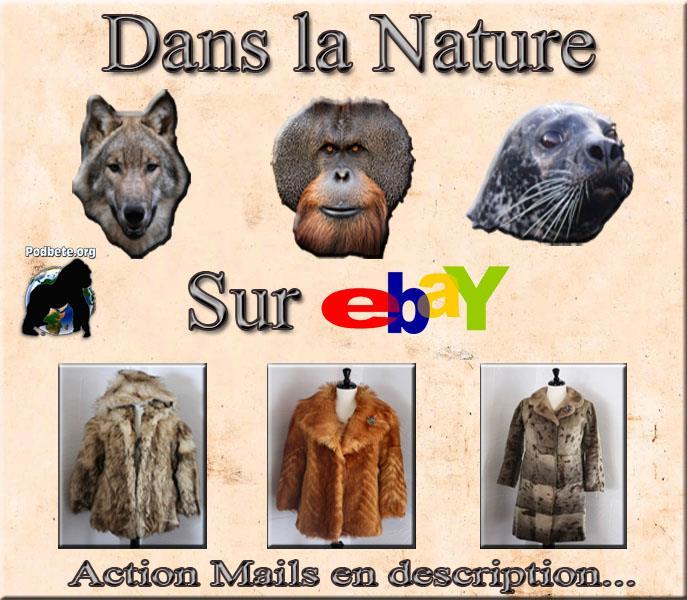 Non à la fourrure d'espèces en danger sur EBAY 56120610