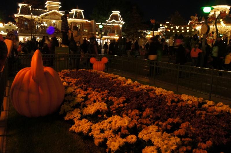 La soirée Halloween Disney 31 octobre 2011 - Page 9 Dsc07410