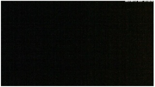 Boars cam, winter 2012 - 2013 - Page 33 2013-228