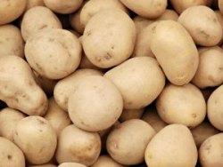 Блюда из картошки 67906010